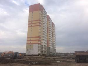 uch-dekorativnye-kultury-l9- ip-zakharchenko -fasadnye-raboty